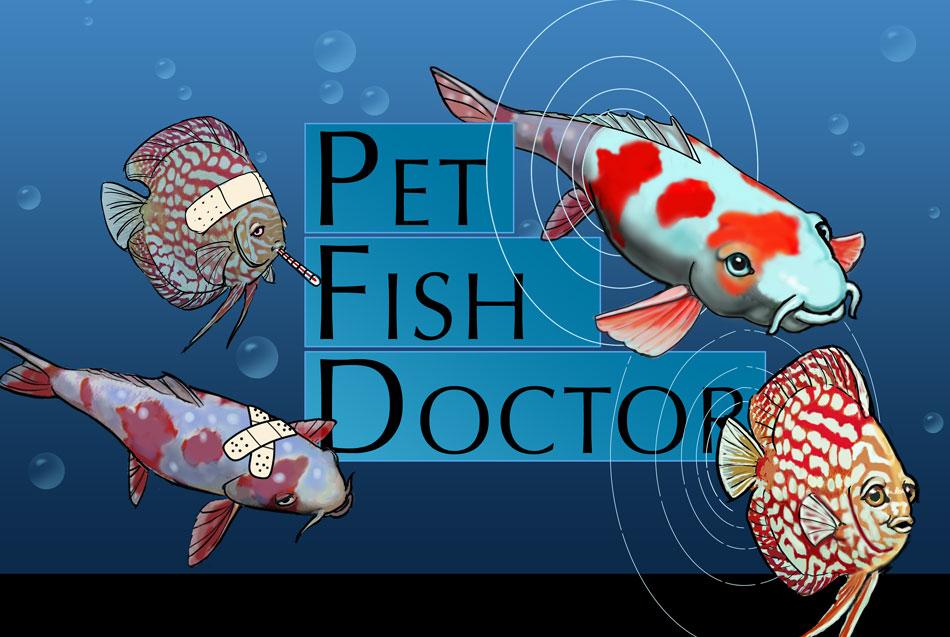 Oxytetracycline for koi fish budesonida oral efectos for Tetracycline for fish